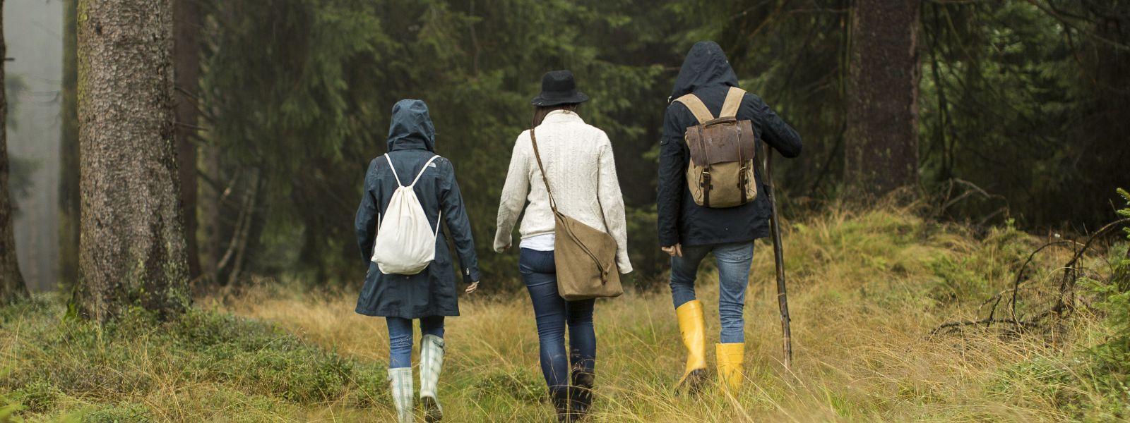 Drei Personen mit Gummistiefeln im Wald wandern raus aus dem Trott