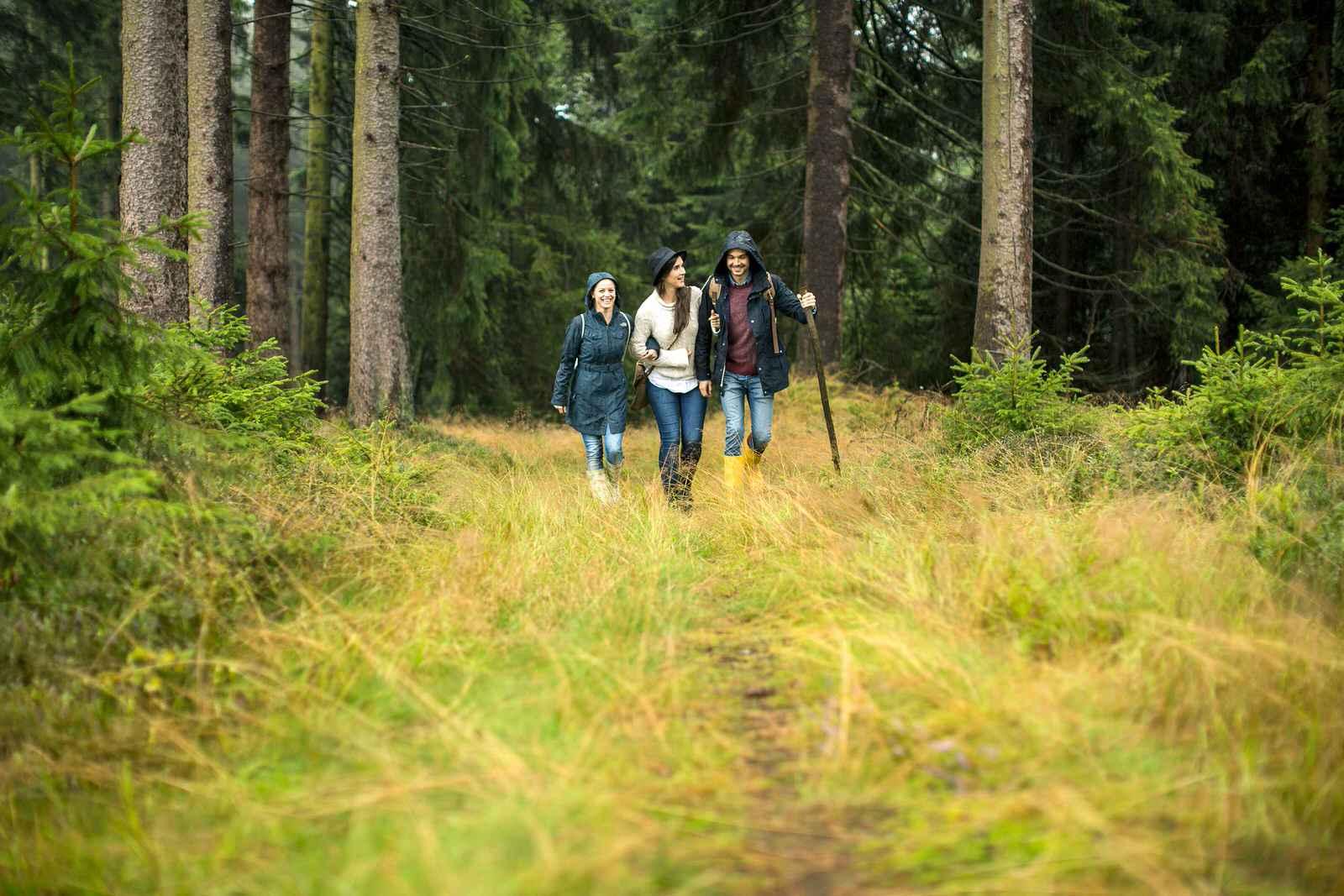 3 Menschen wandern bei Regen im Wald mit Gummistiefel